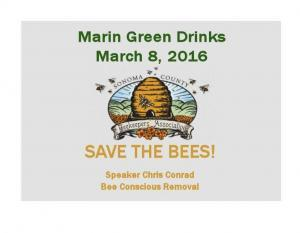 Save the bees  Marin Green Drinks on March 8th Save the bees